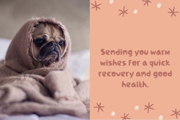 Cards Get well soon all the best