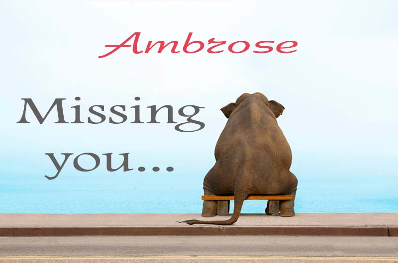 Cards Ambrose Missing you