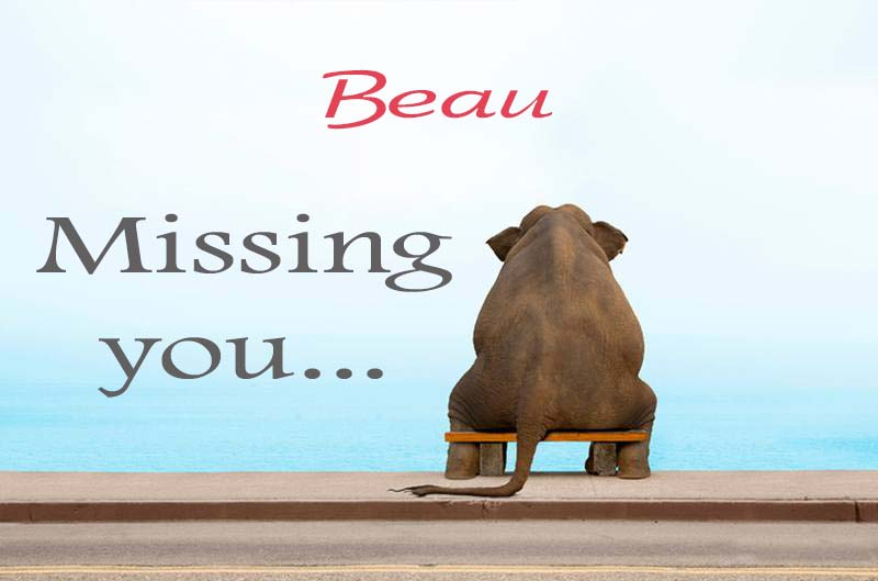 Cards Beau Missing you