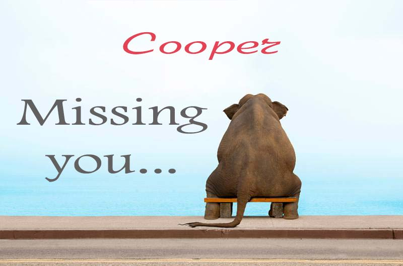 Cards Cooper Missing you