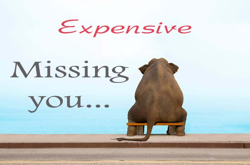 Cards Expensive Missing you