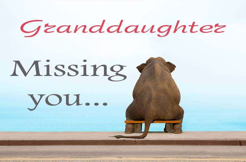 Cards Granddaughter Missing you