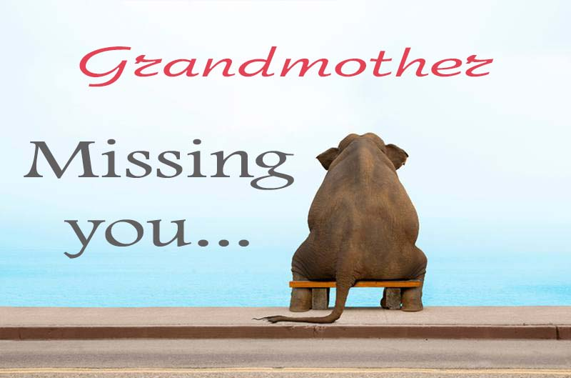 Cards Grandmother Missing you