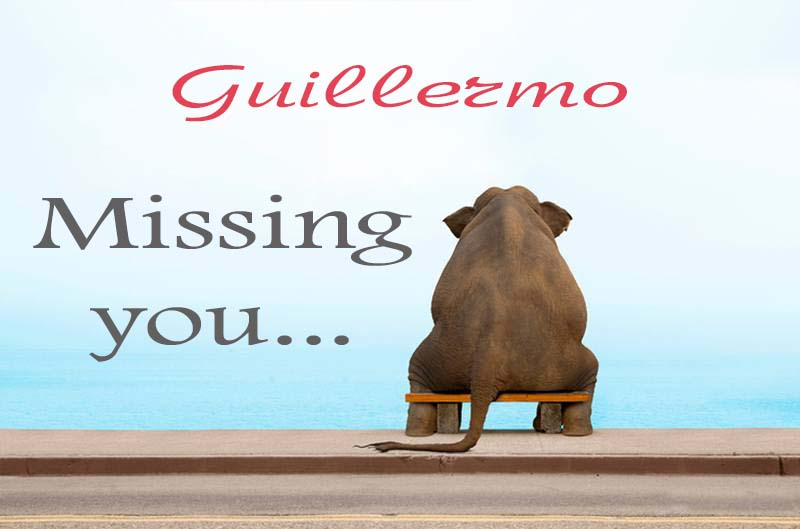 Cards Guillermo Missing you