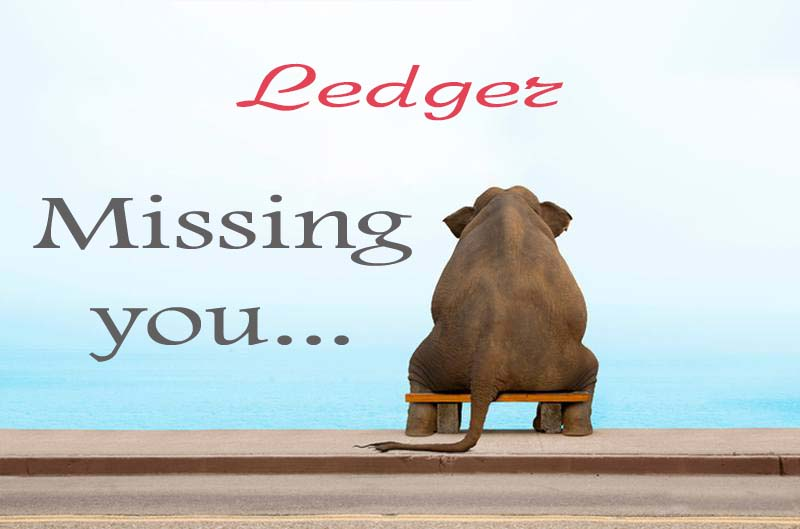 Cards Ledger Missing you
