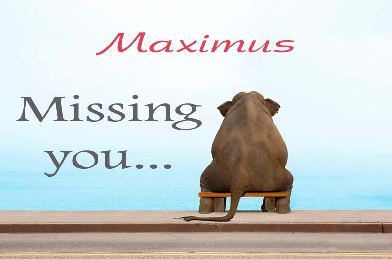 Cards Maximus Missing you