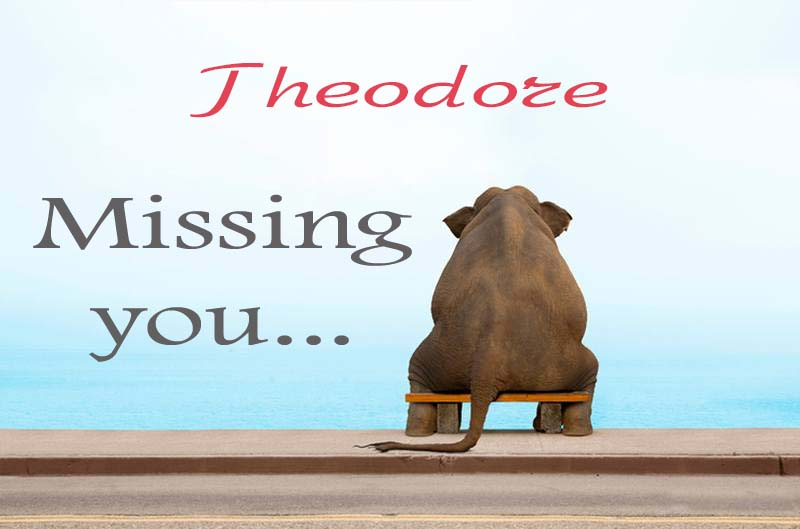 Cards Theodore Missing you