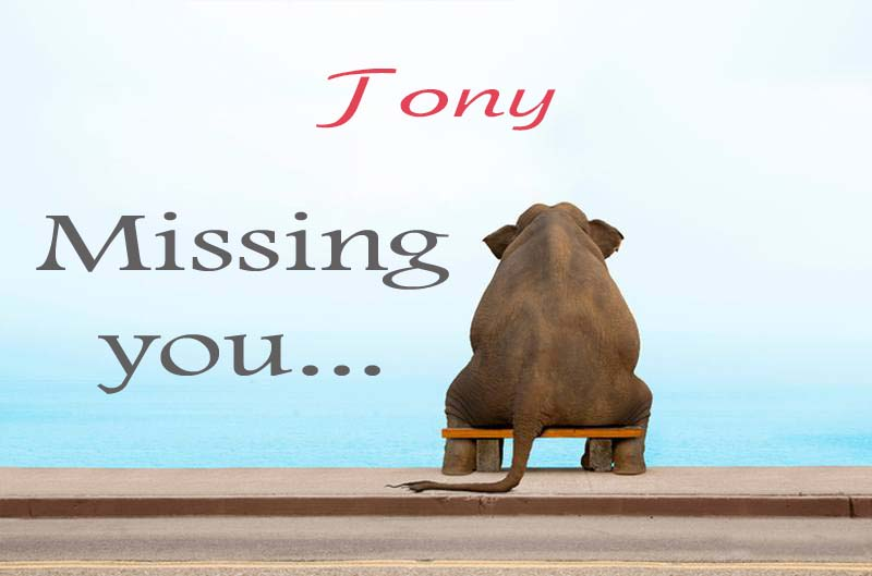 Cards Tony Missing you