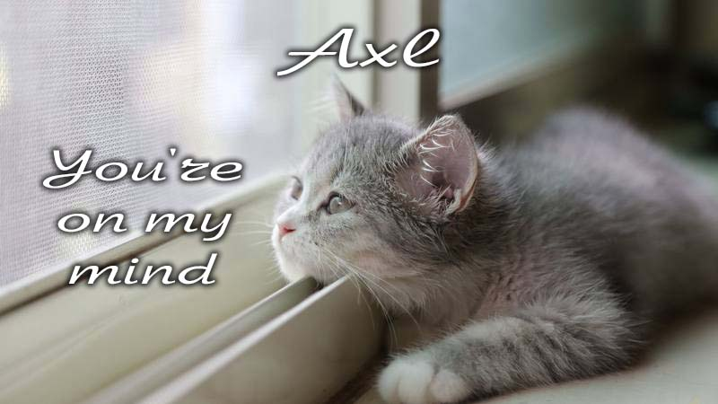 Ecards Missing you so much Axl