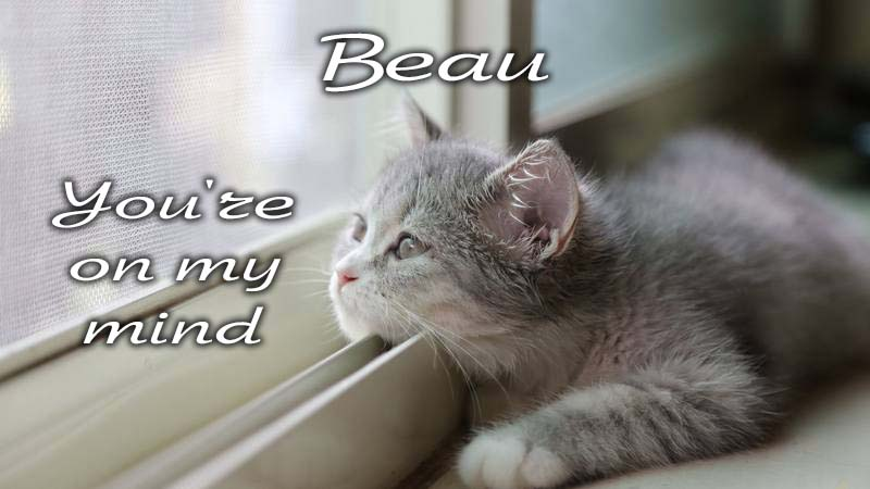 Ecards Missing you so much Beau