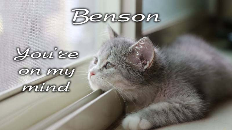 Ecards Missing you so much Benson