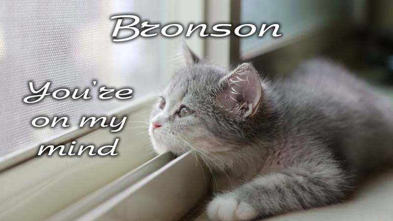 Ecards Missing you so much Bronson
