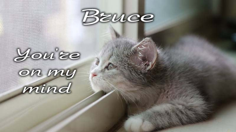Ecards Missing you so much Bruce