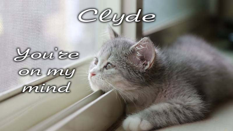 Ecards Missing you so much Clyde