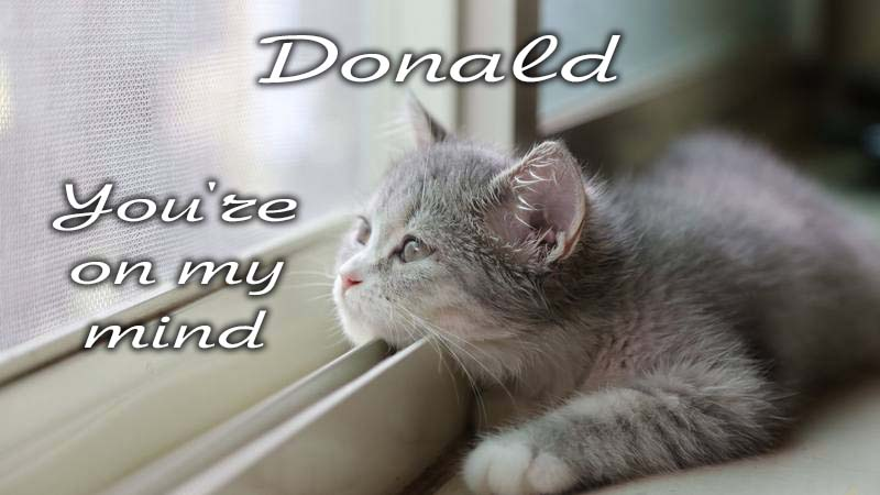 Ecards Missing you so much Donald