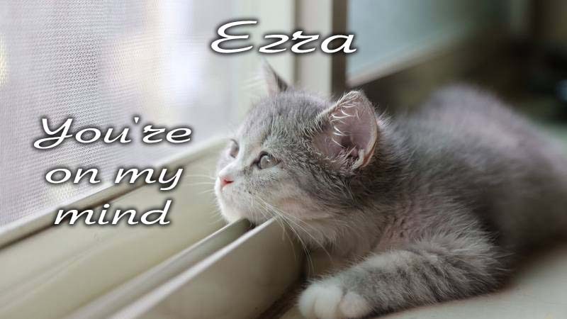 Ecards Missing you so much Ezra