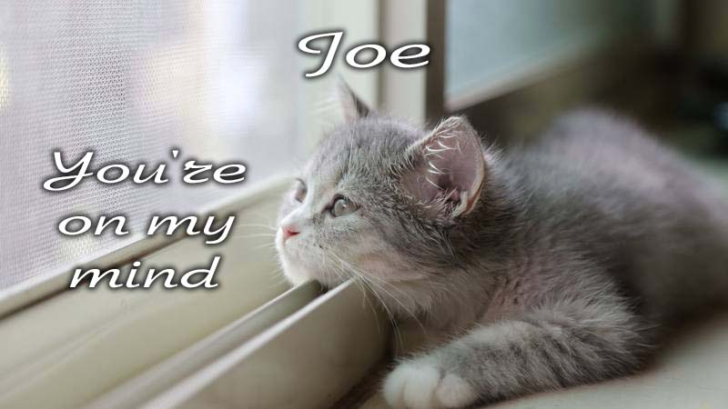 Ecards Missing you so much Joe