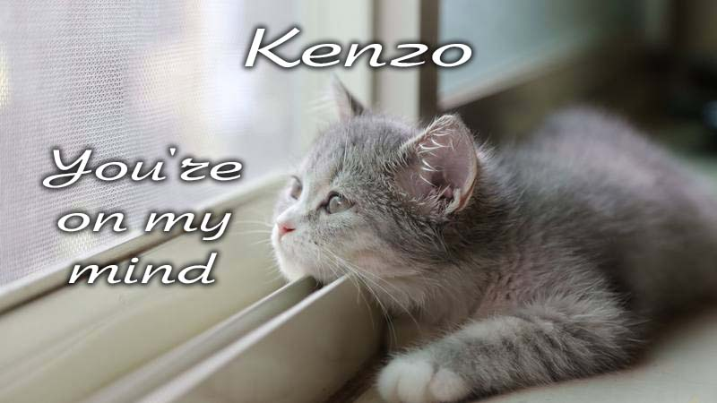 Ecards Missing you so much Kenzo