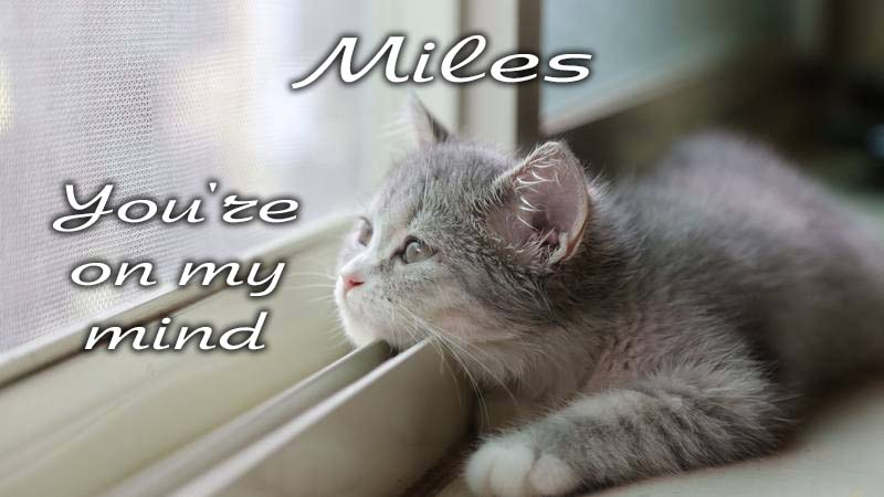 Ecards Missing you so much Miles