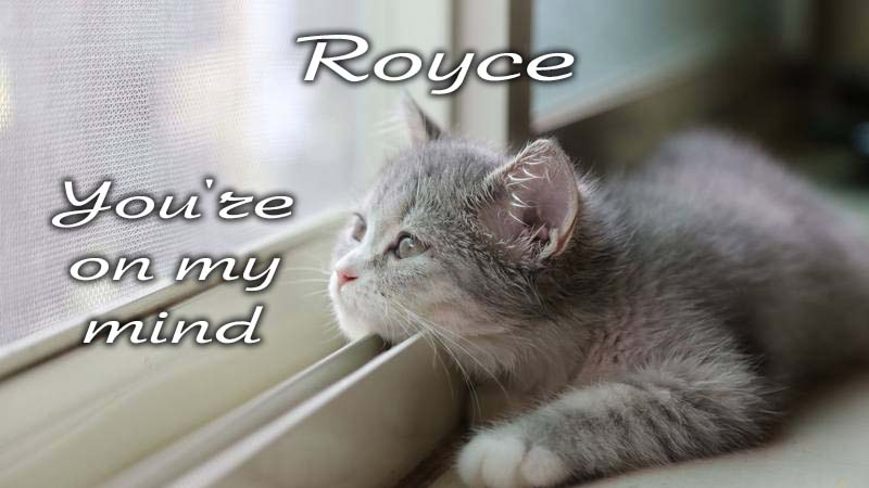Ecards Missing you so much Royce