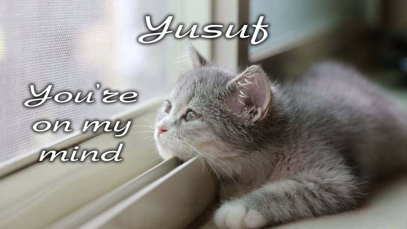 Ecards Missing you so much Yusuf