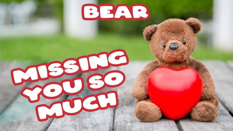 Ecards Bear Missing you already