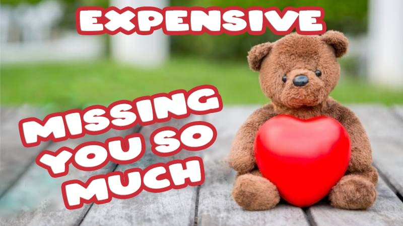 Ecards Missing you so much Expensive