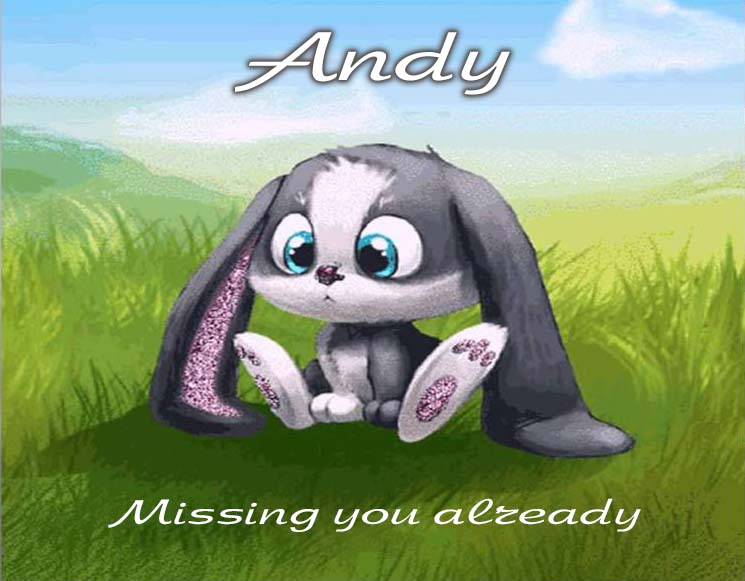Cards Andy I am missing you every hour, every minute