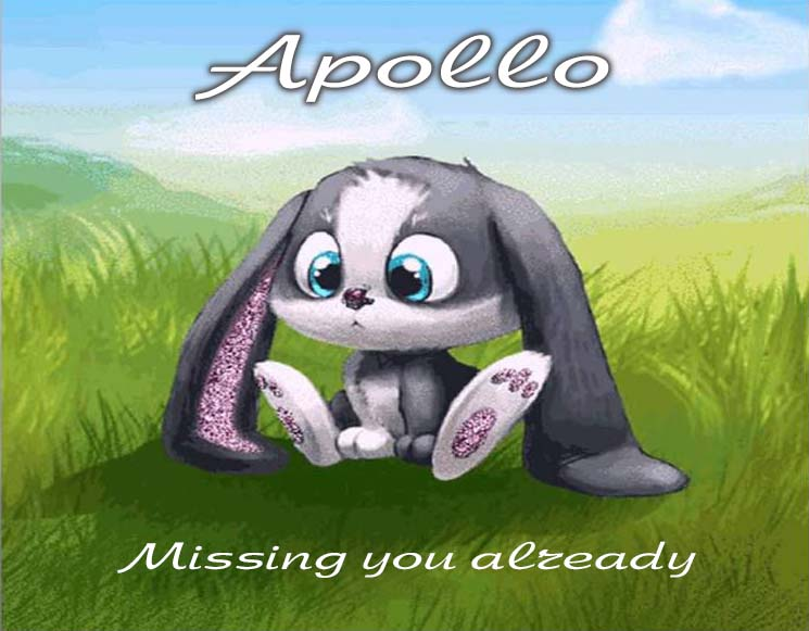 Cards Apollo I am missing you every hour, every minute