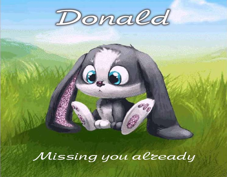 Cards Donald I am missing you every hour, every minute