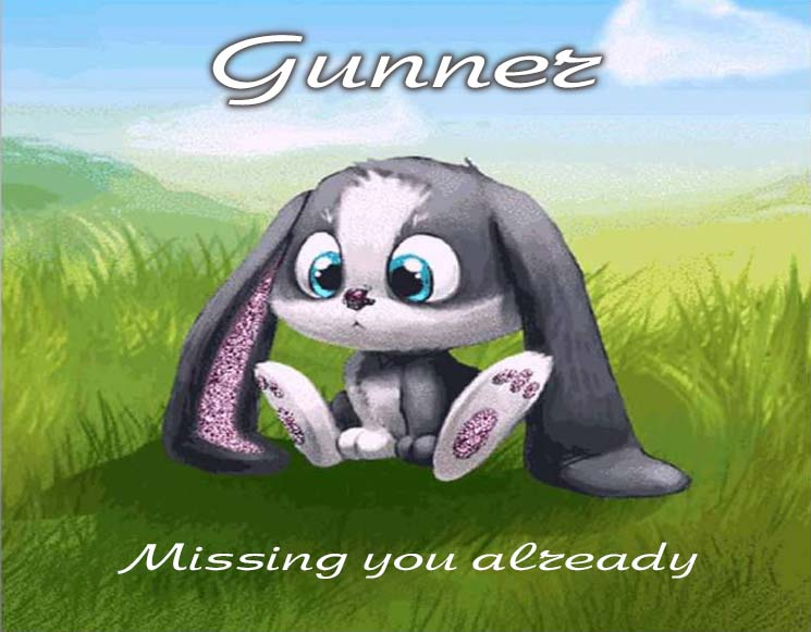 Cards Gunner I am missing you every hour, every minute