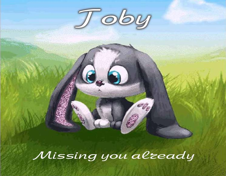Cards Toby I am missing you every hour, every minute