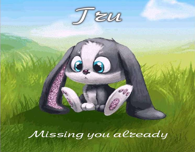 Cards Tru I am missing you every hour, every minute