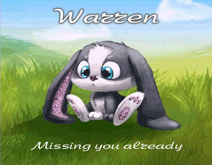Cards Warren I am missing you every hour, every minute