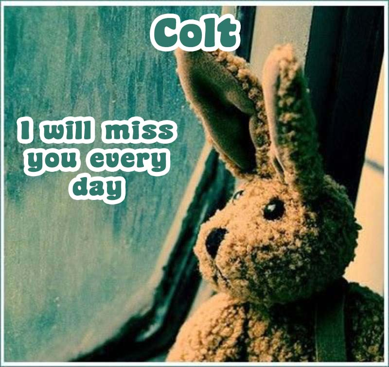 Ecards Colt I miss you.. every second of every minute