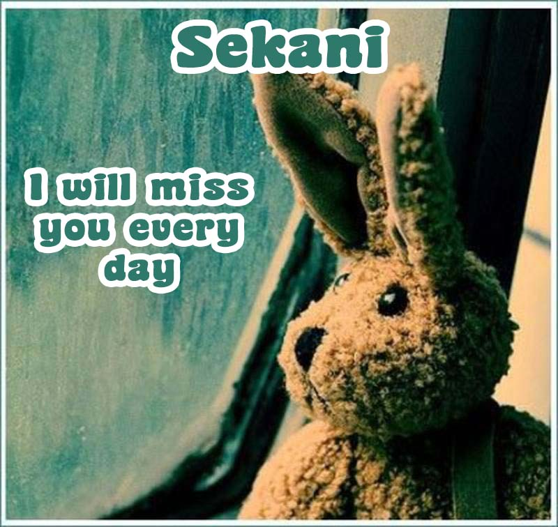 Ecards Sekani I miss you.. every second of every minute