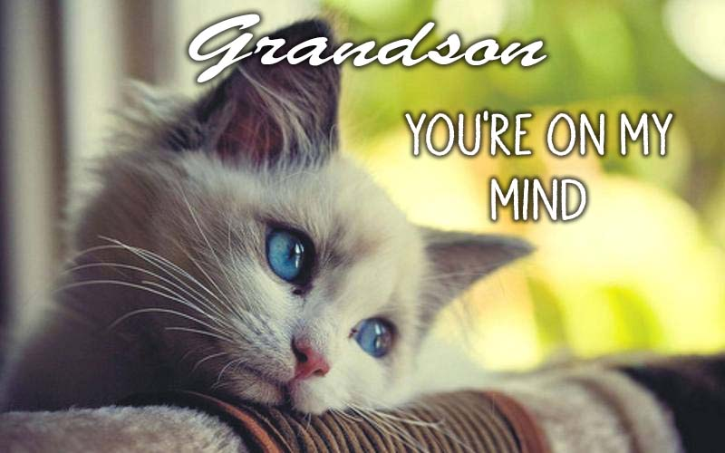 Ecards Missing you so much Grandson