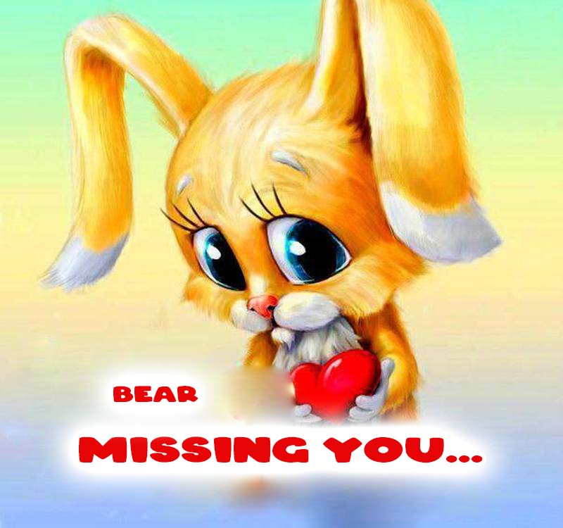 Cards Bear Missing you