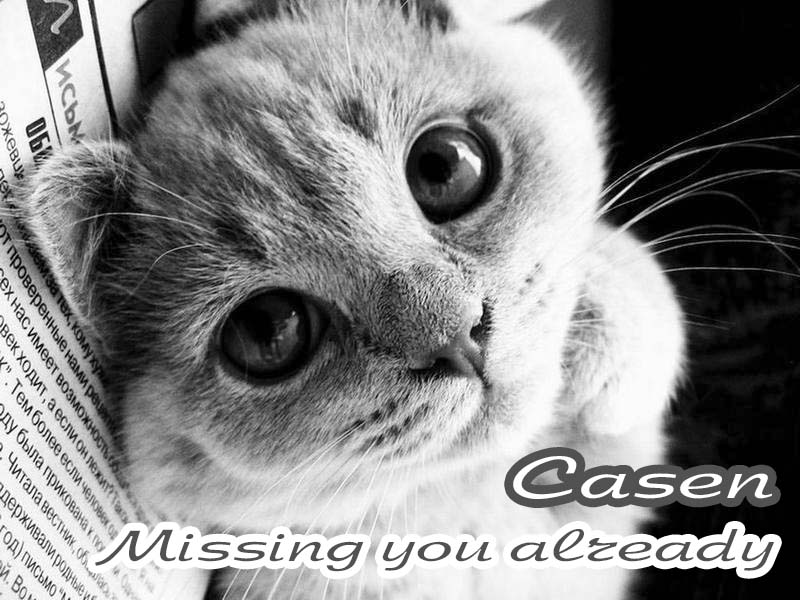 Cards Missing you too