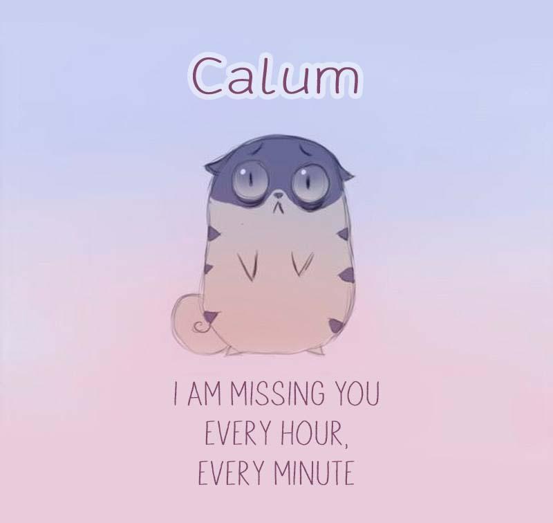 Cards Calum I am missing you every hour, every minute