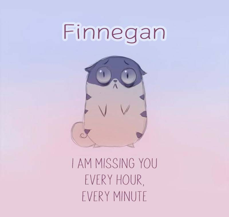 Cards Finnegan I am missing you every hour, every minute