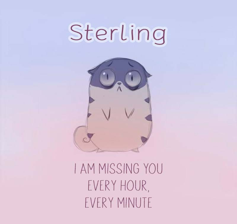 Cards Sterling I am missing you every hour, every minute