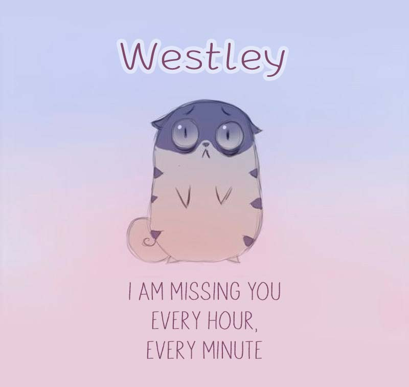 Cards Westley I am missing you every hour, every minute