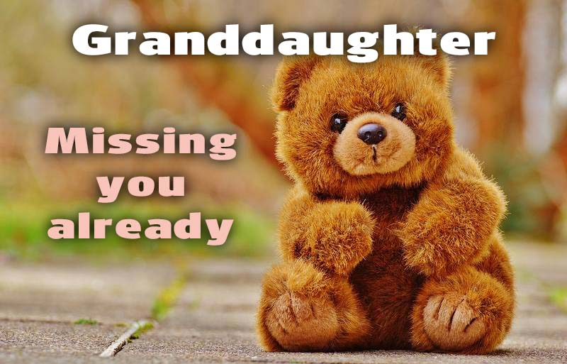Ecards Granddaughter Missing you already
