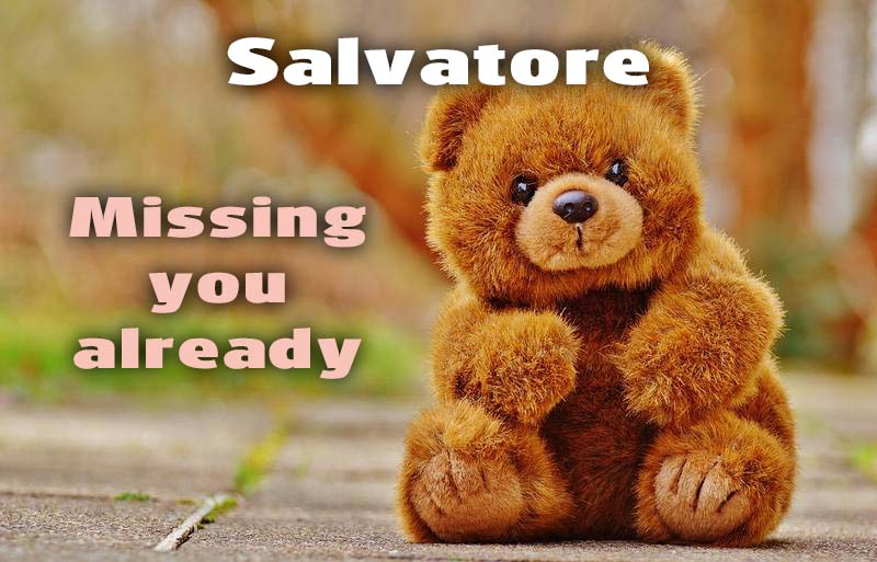 Ecards Salvatore I miss you.. every second of every minute