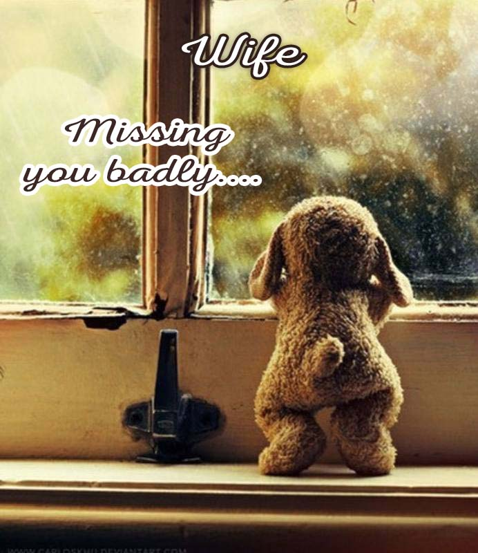 Cards Wife I am missing you every hour, every minute