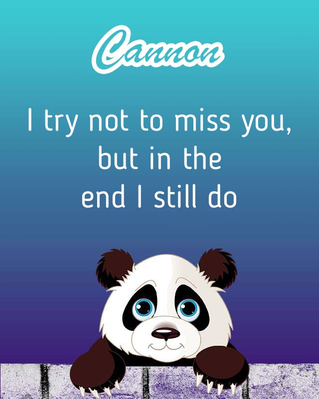 Cards Cannon I will miss you every day